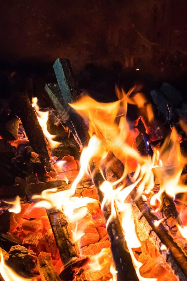 灼烧的在炽热煤炭背景的火明亮的火焰稀薄的木柴野营烹调在自然的题目的依据 免版税库存照片