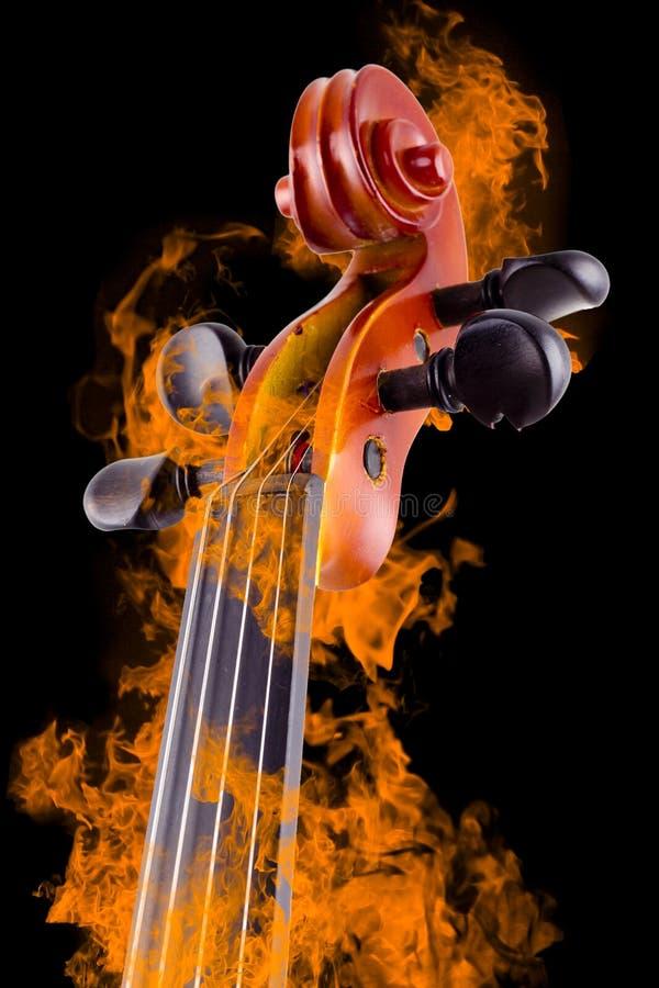 灼烧的小提琴 免版税库存图片