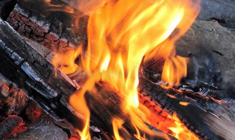 灼烧的木头 免版税图库摄影