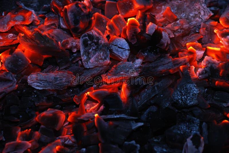 灼烧的木炭特写镜头 库存图片