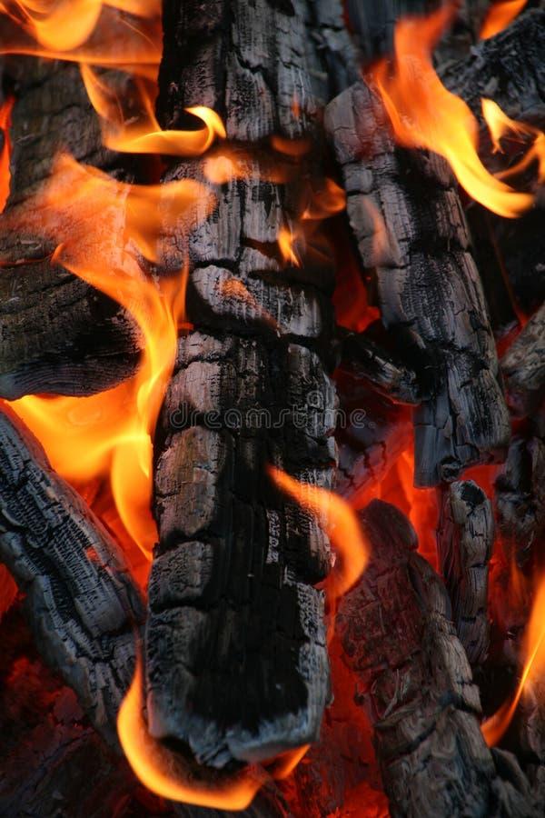 灼烧的火木头 图库摄影