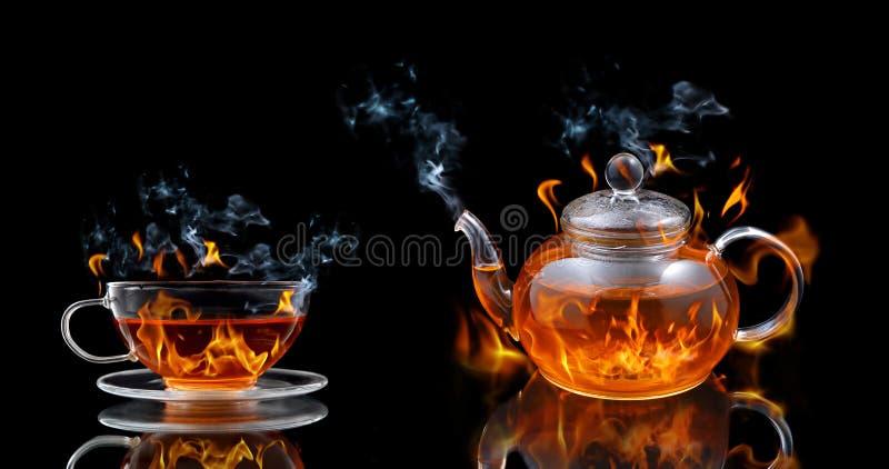 灼烧的茶 图库摄影