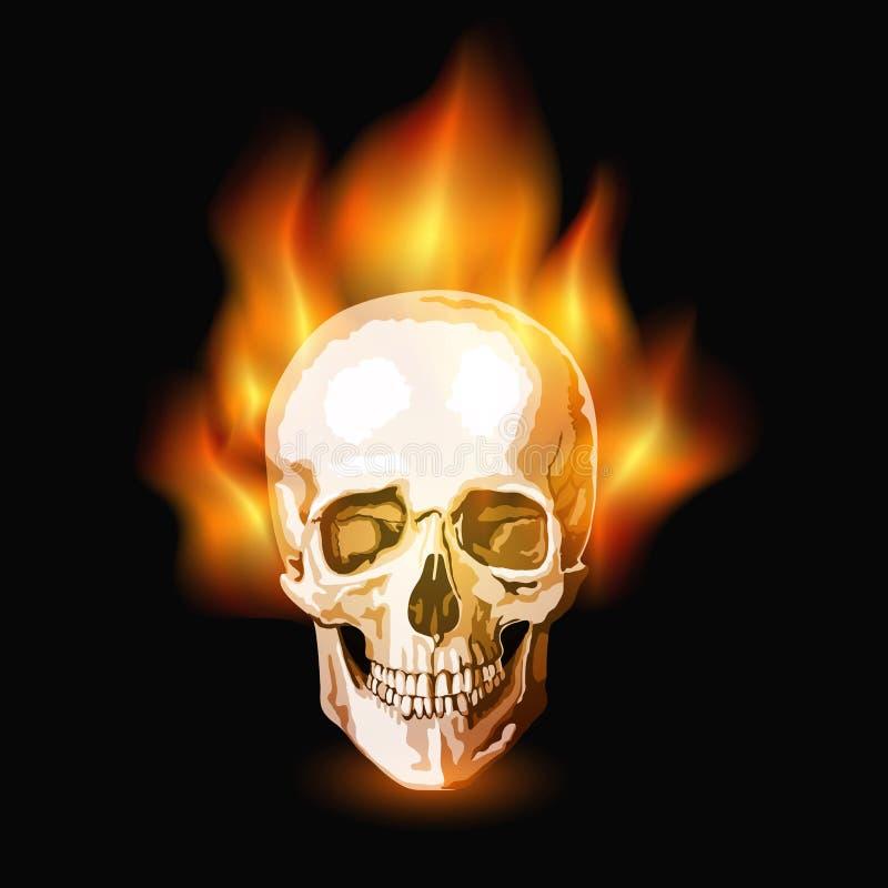 灼烧的头骨 向量例证