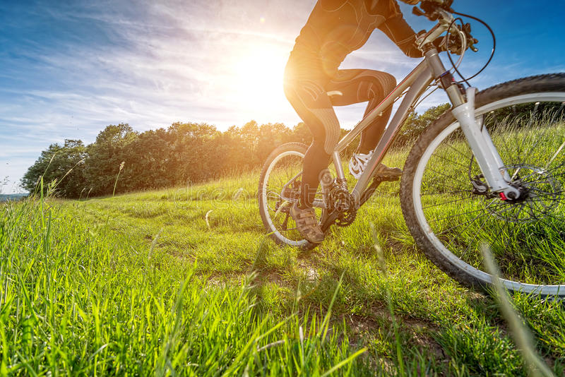 炫耀自行车,循环在美丽的草甸,细节照片 免版税库存照片
