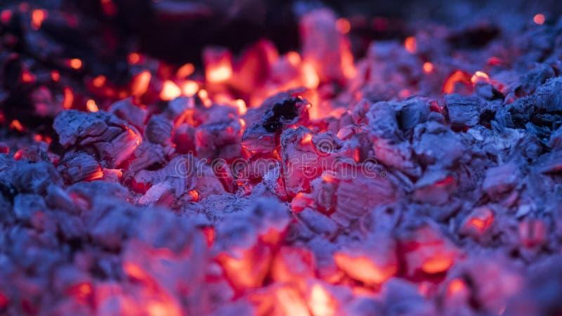 炭烬发光 库存照片
