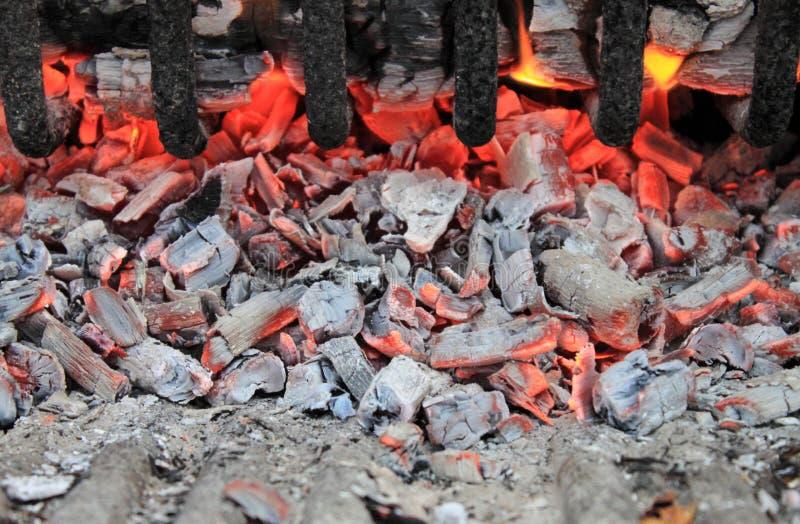 炭烬 免版税图库摄影