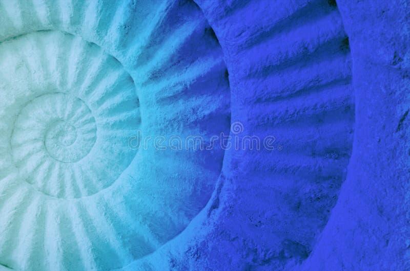 炸药史前化石的颜色 图库摄影