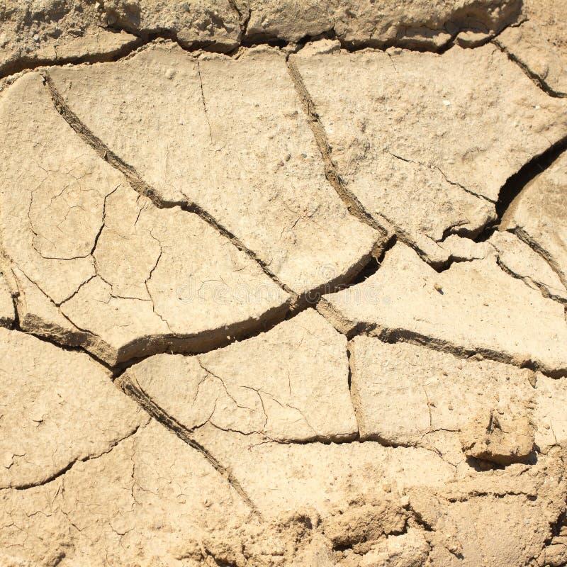 烘干一个热的夏日特写镜头的破裂的土地 图库摄影