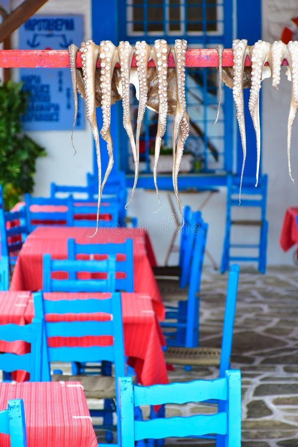 烘干传统希腊小酒馆食物的章鱼在阳光下 免版税库存图片