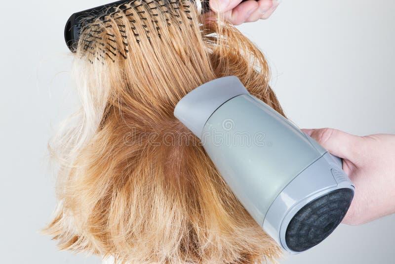 烘干和头发称呼 免版税库存照片