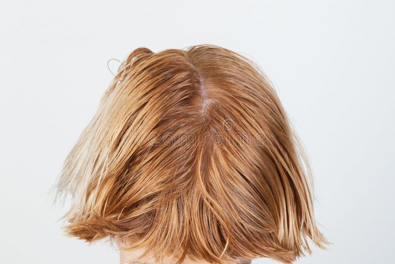 烘干和头发称呼 图库摄影