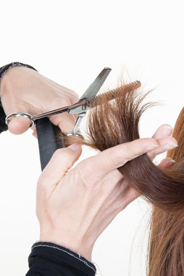 烘干在发廊的美发师美发师的细节妇女头发 免版税库存图片