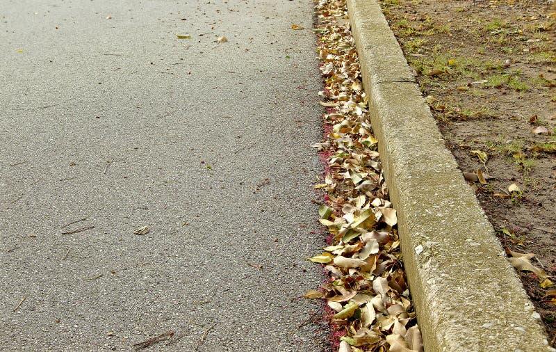 烘干在路天沟的叶子 库存照片