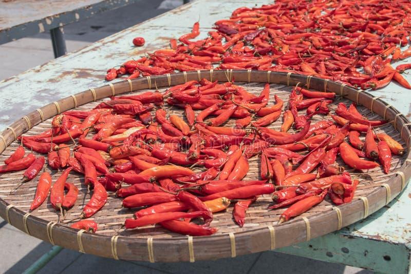 烘干在阳光下在篮子的红辣椒 免版税图库摄影