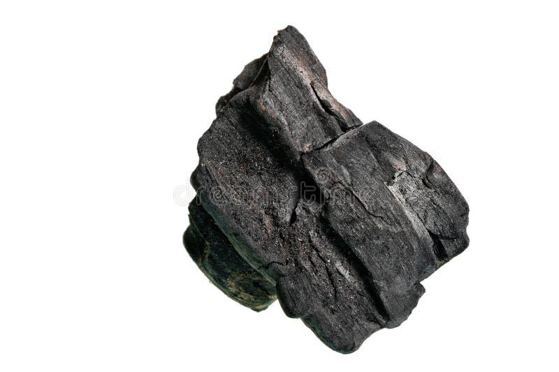 烘干煤炭导致在白色背景的火 免版税库存照片