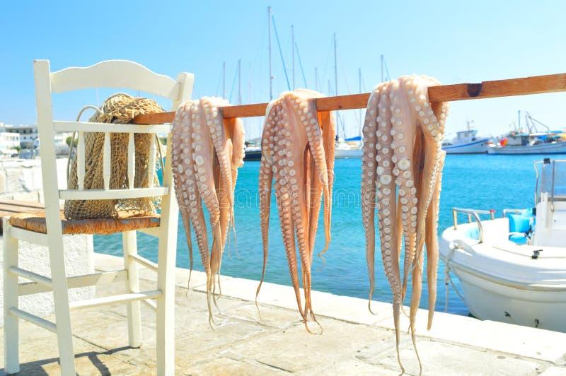 烘干的章鱼在阳光下,纳克索斯岛,基克拉泽斯,希腊 免版税图库摄影