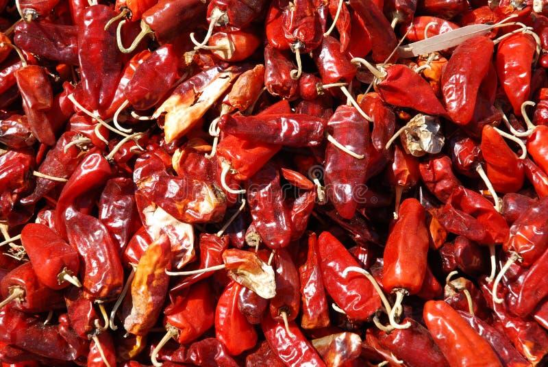 烘干的红辣椒,埃塞俄比亚 图库摄影