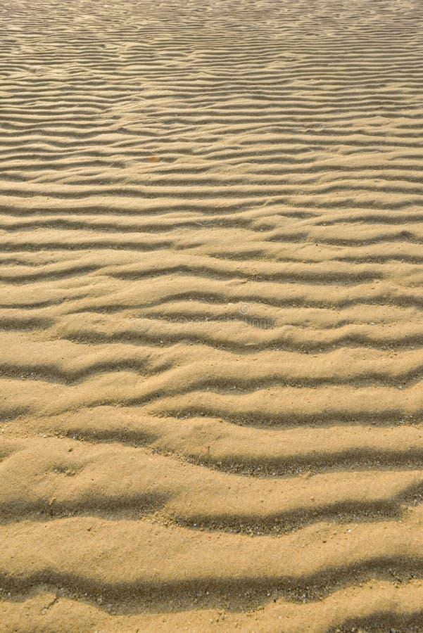 烘干起波纹的金黄沙子,理想对背景 图库摄影