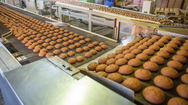 烘烤曲奇饼生产线  在传送带的饼干在糖果店工厂,食品工业 库存照片