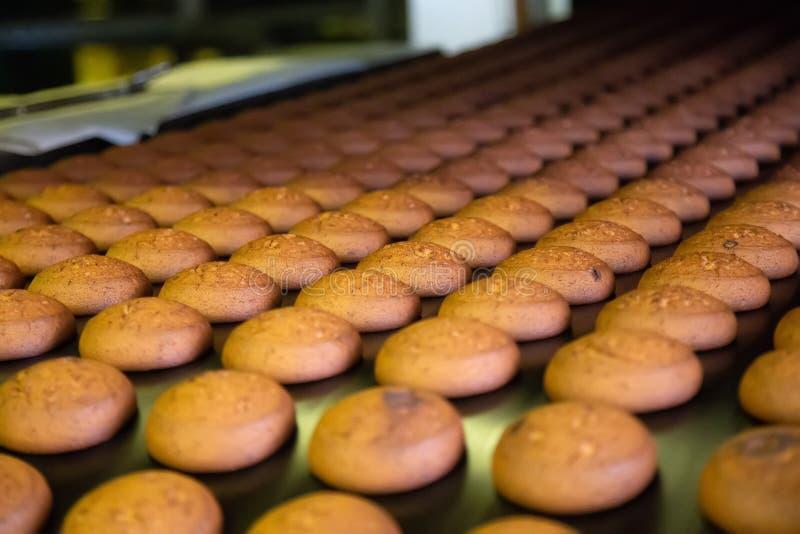 烘烤生产线 在传送带的曲奇饼 库存照片