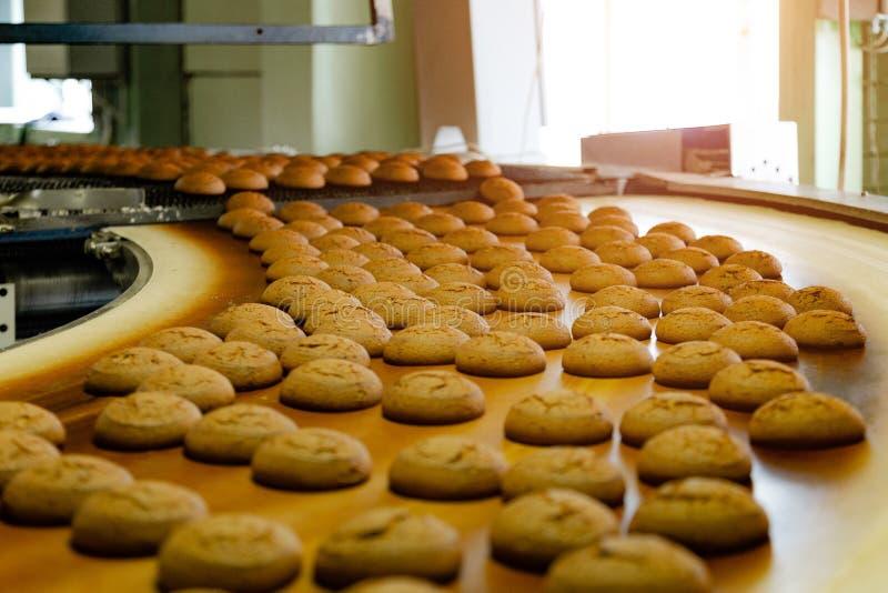 烘烤生产线 在传送带,关闭的曲奇饼 免版税库存照片