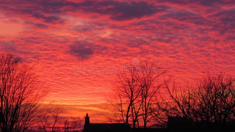 烟囱和树现出轮廓反对火红和橙色天空 免版税库存图片