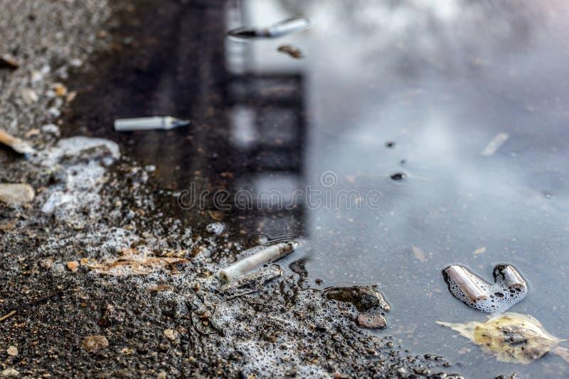 烟头和叶子在秋天水坑 选择聚焦 免版税库存照片