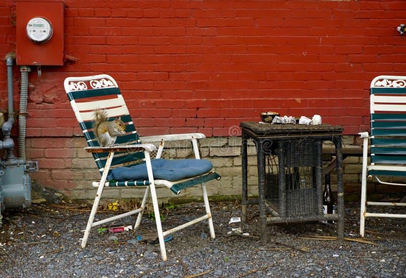 烟斑点 免版税库存图片