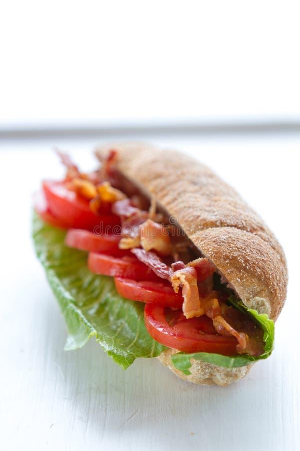 烟肉和蕃茄三明治 库存照片