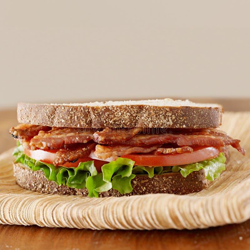 烟肉莴苣和蕃茄三明治 库存照片