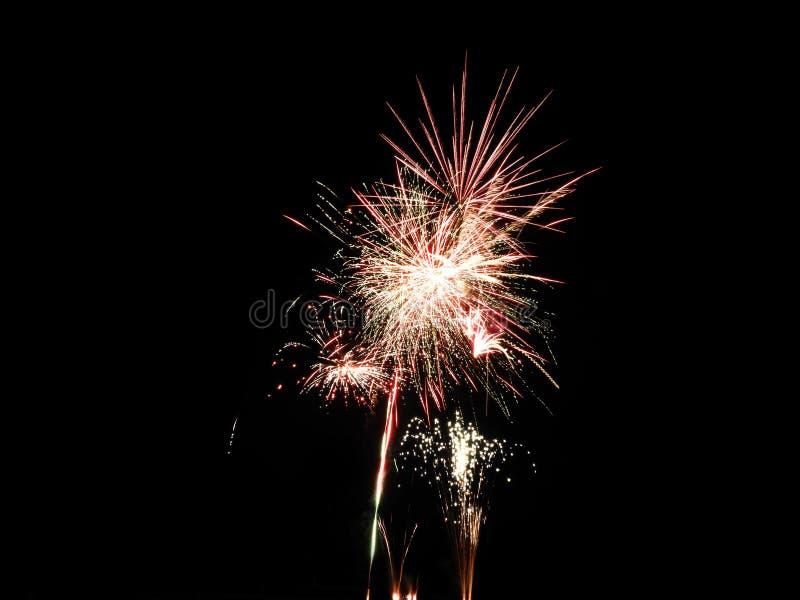 烟花在黑夜空庆祝爆炸 库存照片