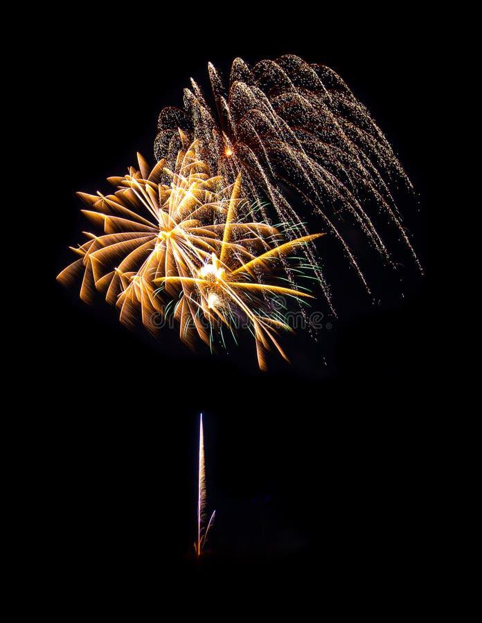 烟花庆典在晚上 库存图片
