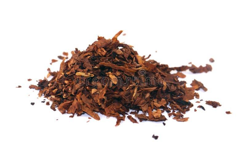 烟草 免版税库存图片