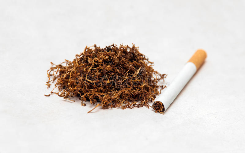 烟草 库存照片