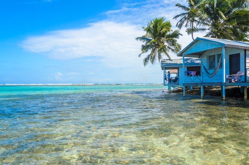 烟草Caye -放松在客舱或平房在小热带海岛上在堡礁与天堂海滩,加勒比海,伯利兹, 库存图片