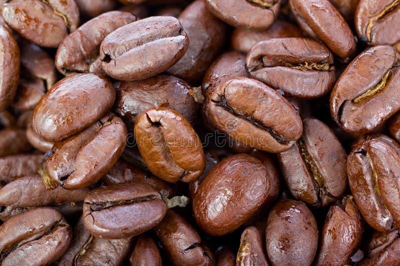 Download 烤咖啡豆 库存照片. 图片 包括有 商务, 种子, 热奶咖啡, 背包, 黑暗, 成颗粒状, 咖啡, 倾吐 - 30335552