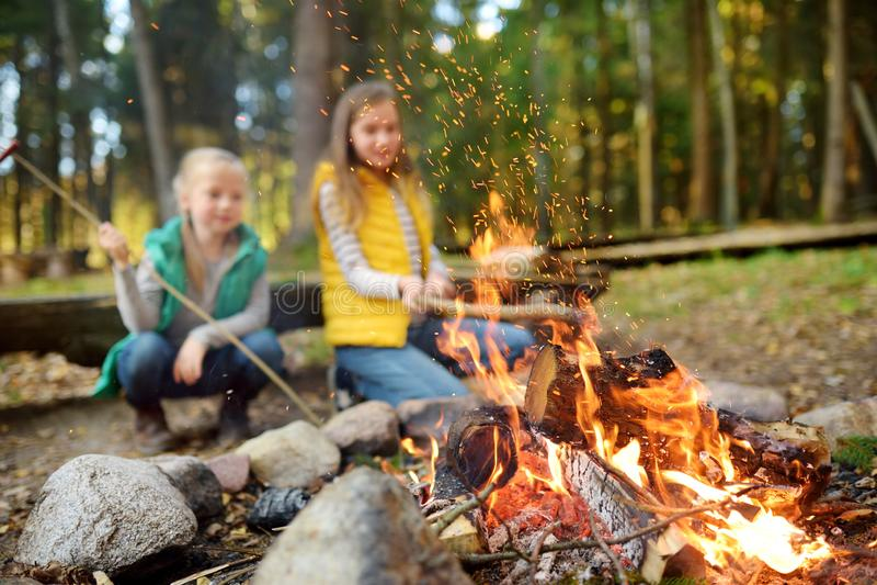 烤在棍子的逗人喜爱的年轻姐妹热狗在篝火 孩子获得乐趣在阵营火 野营与孩子在秋天森林里 免版税图库摄影