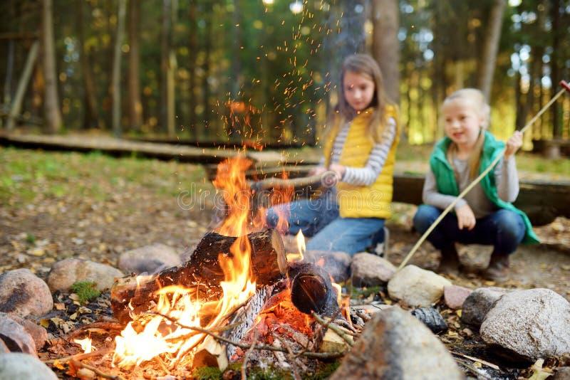 烤在棍子的逗人喜爱的年轻姐妹热狗在篝火 孩子获得乐趣在阵营火 野营与孩子在秋天森林里 库存图片