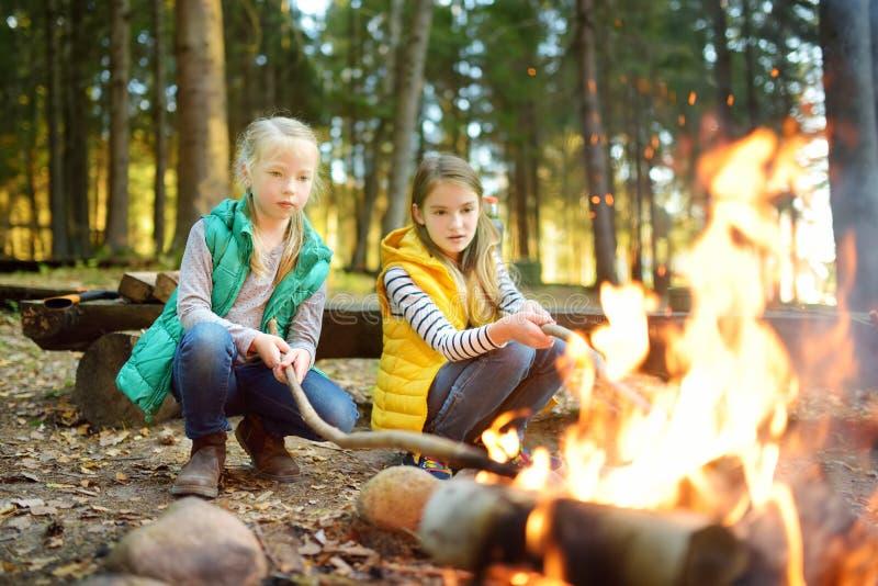 烤在棍子的逗人喜爱的年轻姐妹热狗在篝火 孩子获得乐趣在阵营火 野营与孩子在秋天森林里 免版税库存图片