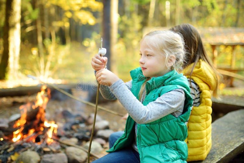 烤在棍子的逗人喜爱的年轻姐妹蛋白软糖在篝火 孩子获得乐趣在阵营火 野营与秋天的孩子 免版税库存图片