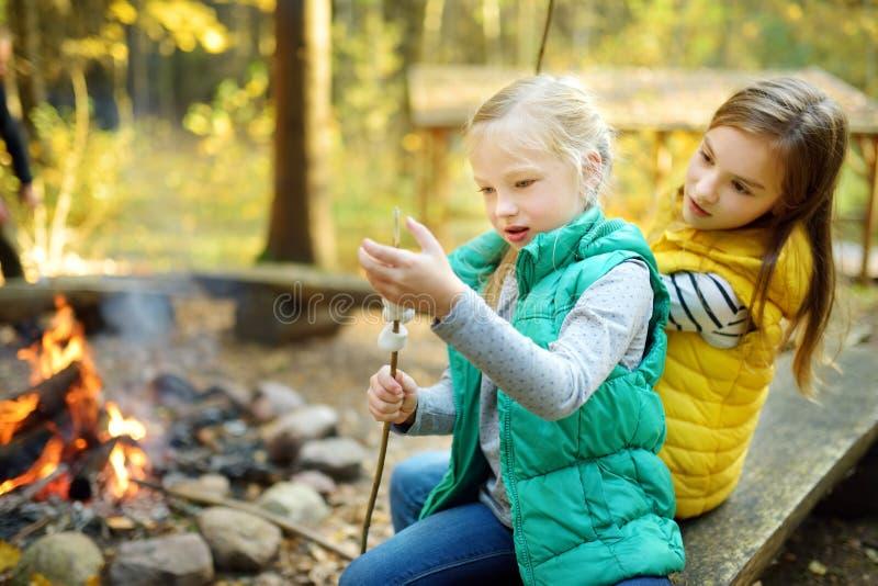 烤在棍子的逗人喜爱的年轻姐妹蛋白软糖在篝火 孩子获得乐趣在阵营火 野营与秋天的孩子 图库摄影