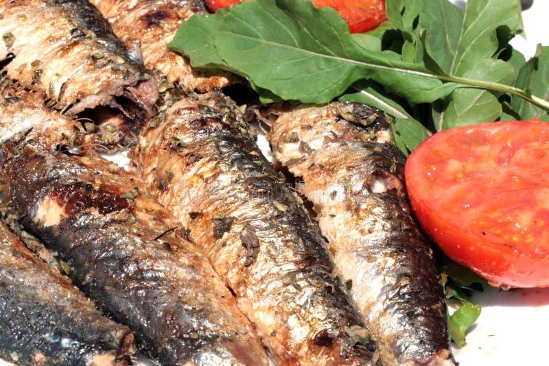 烤沙丁鱼抽烟 库存图片