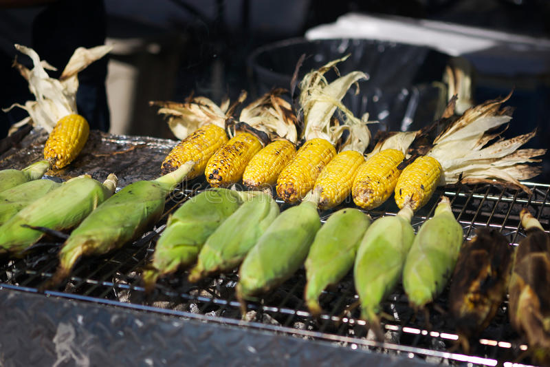 烤甜玉米 库存图片