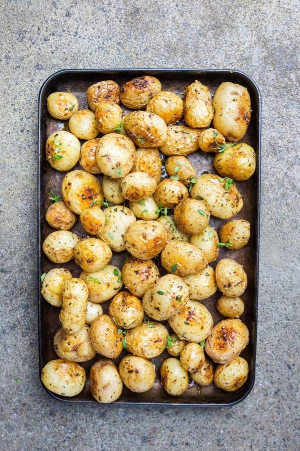 烤的婴孩土豆 免版税库存图片