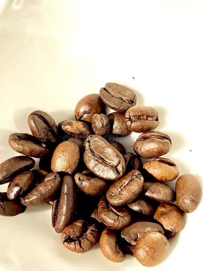 烤的豆咖啡 在一块白色陶瓷板材上 图库摄影