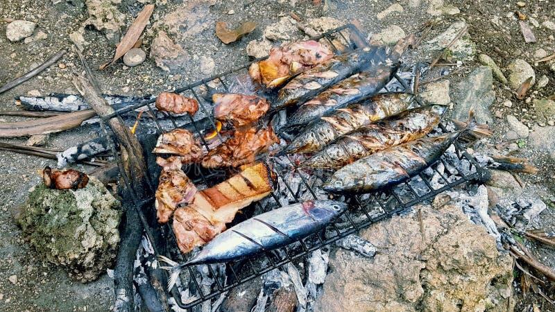 烤的鱼 图库摄影