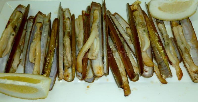 烤竹蛏 免版税库存图片
