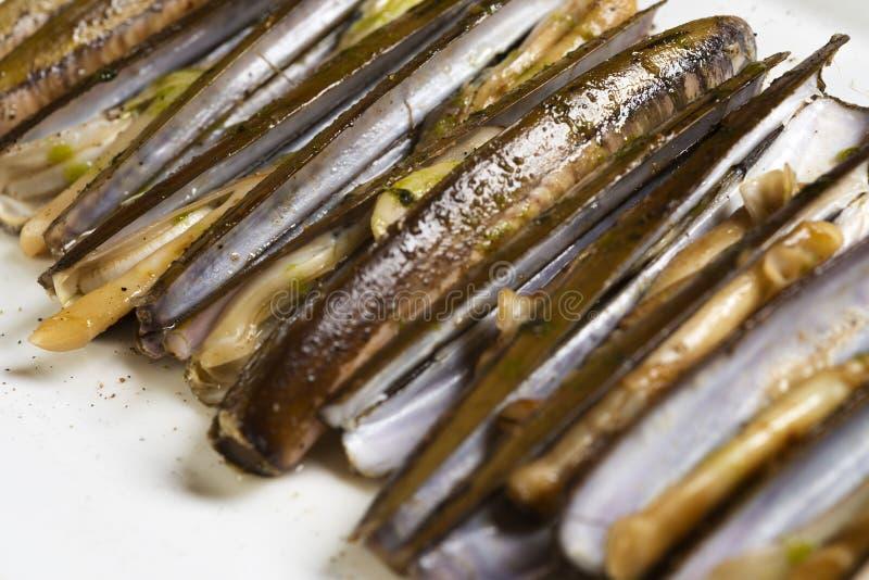 烤竹蛏 库存图片