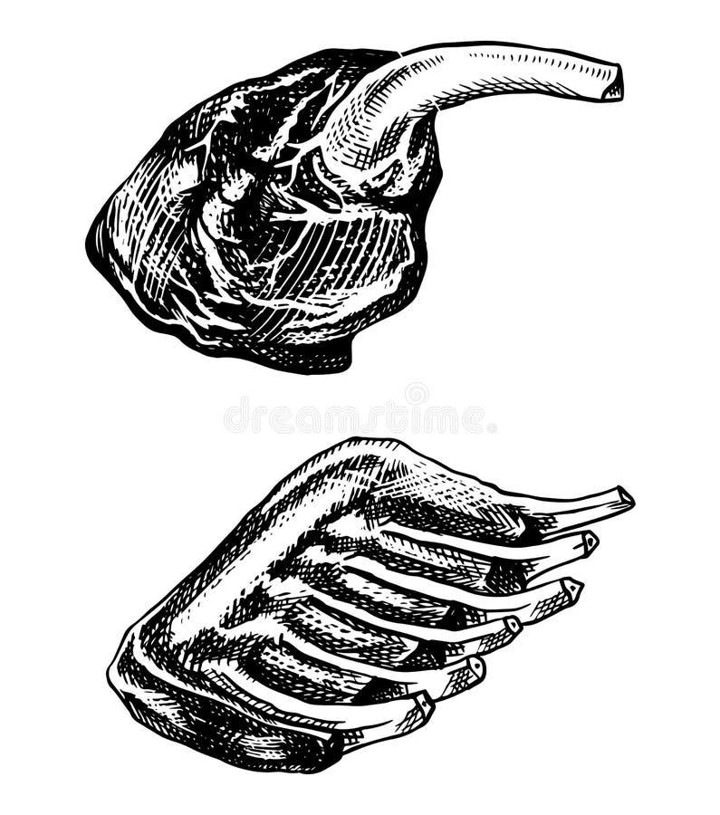 烤肉、BBQ排骨和牛肉腿 在葡萄酒样式的烤肉食物 餐馆菜单、象征或者徽章的模板 向量例证