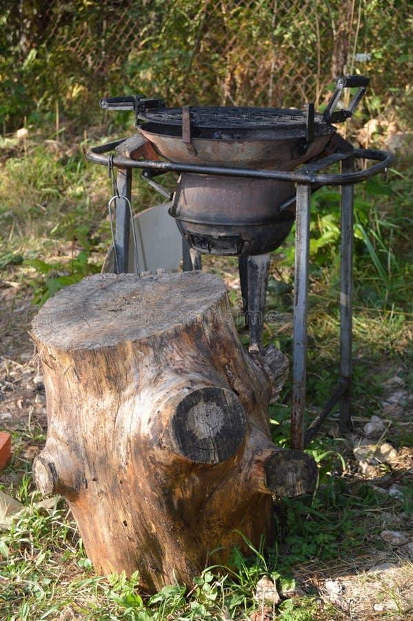 烤肉在森林里 库存照片